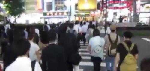 日本跟蹤狂激增, 最愛女主播及女明星