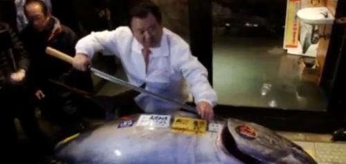 日本黑鮪魚120萬元台幣拍出
