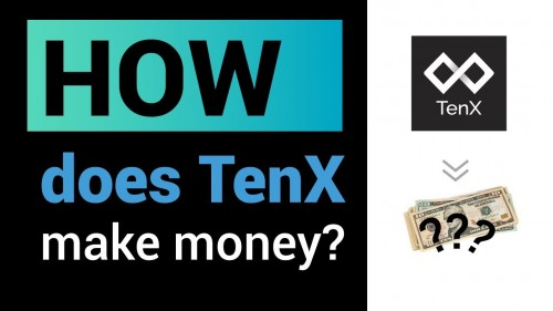 How does TenX make money?