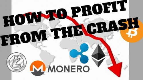 How to Profit During the Crypto Crash