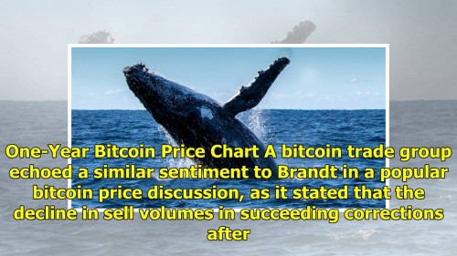 No Evidence Whales are Manipulating Bitcoin Price